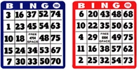 100-Pack Professional &nbsp;&nbsp;<br />Single Hard Bingo Card Single, Hard, Bingo, Card, games